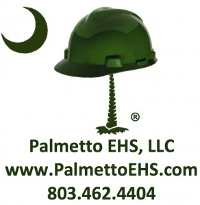 Palmetto EHS, LLC
